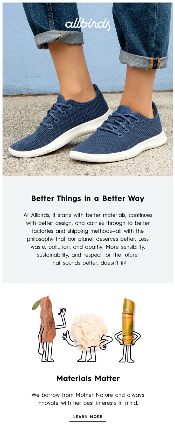 email example allbirds